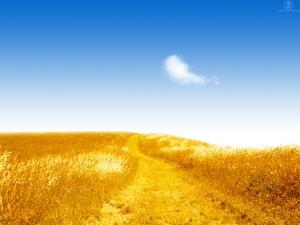 sunny day, yellow, light, happy