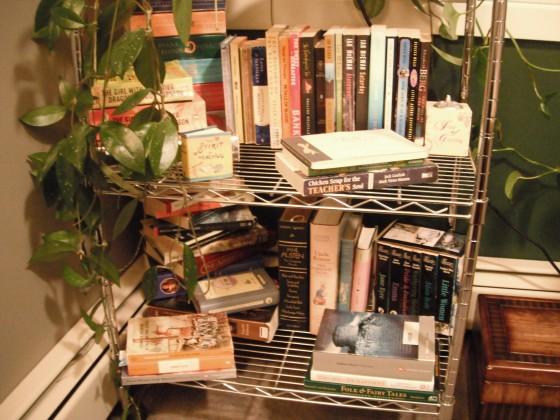 classics, gabaldon, mcewan, teaching books,